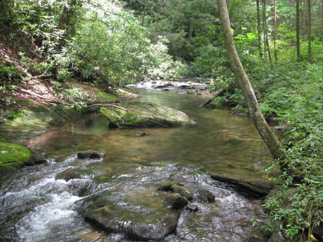 Coleman River Scenic Area