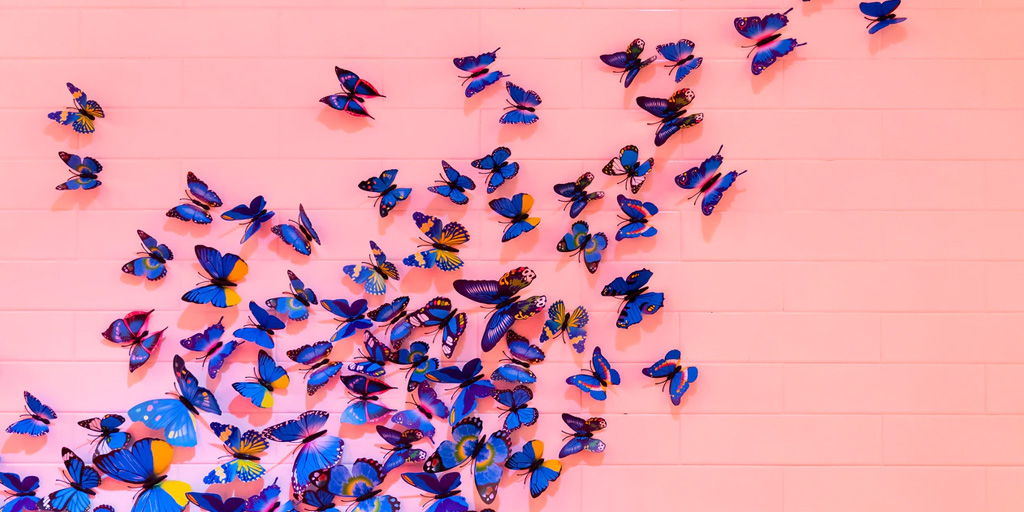 2020-butterfly_featured